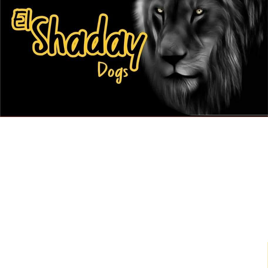 El  Shaday Dog