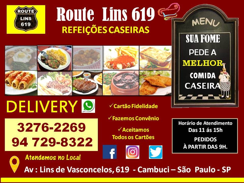 Route Lins 619