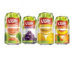 Suco Del Valle lata 290 ml(uva ou pessego)