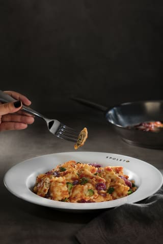 Ravioli de Frango (massa + molho + ingredientes)