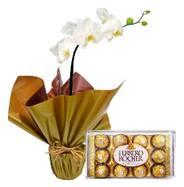 Orquidea phalenopsis plantada com chocolates