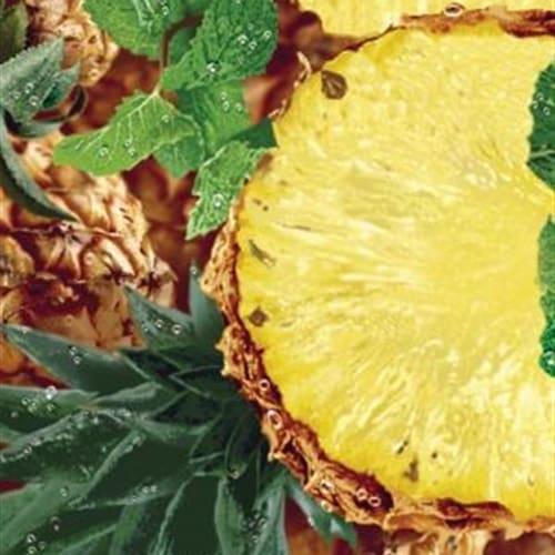 Suco abacaxi com hortelã polpa 500ml