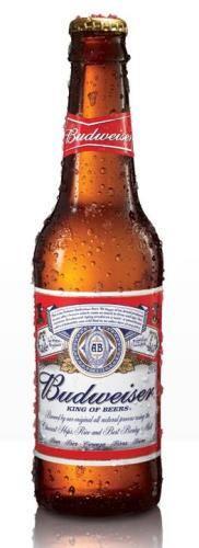123 - cerveja budweiser (long neck)