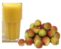 Mangaba