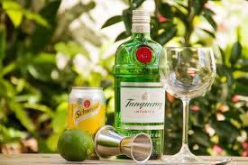 Gin Tanqueray + 4 Tônicas Schweppes Citrus Lata + Gelo Filtrado 3, 5kg