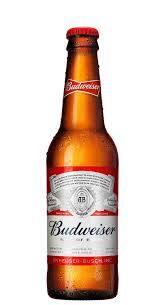 Cerveja long neck: Budweiser