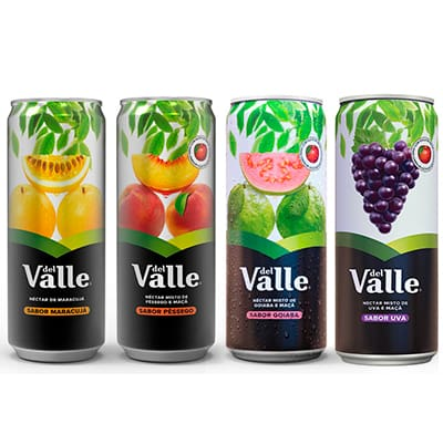Dell Valle 290 ml (Sabores)