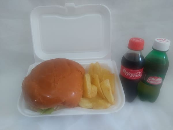 Delícia burguer tudo + batata frita + refri