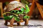 Logotipo Tartaruga Delivery