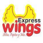 Logotipo Express Wings