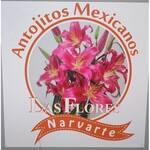 Logotipo Antojitos las Flores