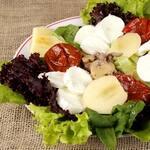 Salada chef premium