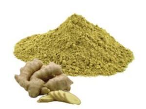 Gengibre puro em pó (granel 100g)