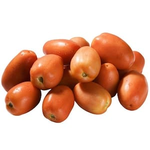 Tomate Italiano Kg