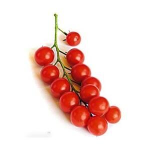 Tomate Cereja Kg