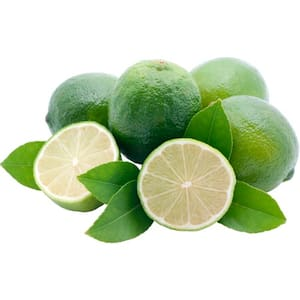 Limão Taiti