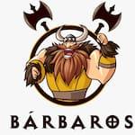 Barbaros Delivery