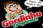 Gordinho Tropicali