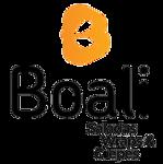 Logotipo Boali - Consolação