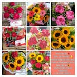 Floricultura Florescer