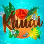 Kauai Açaí & Tapioca